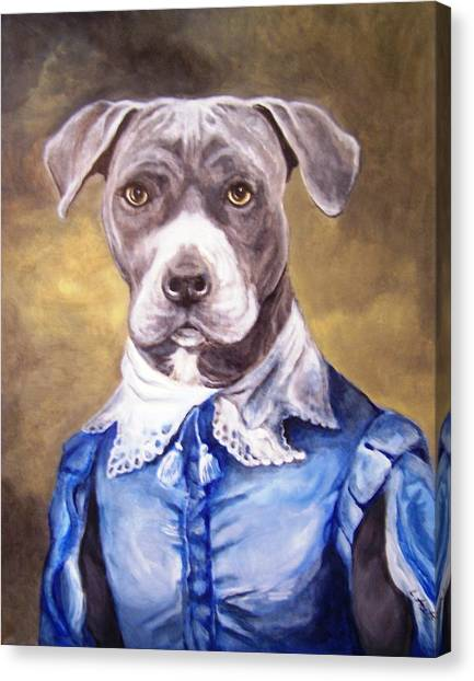 Blue Bully Boy Canvas Print