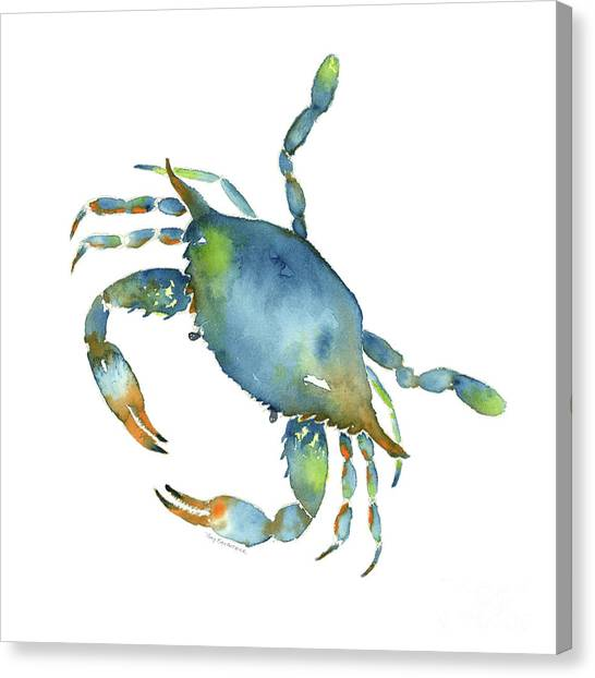 Crabs Canvas Print - Blue Crab by Amy Kirkpatrick