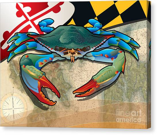 Blue Crab Of Maryland Canvas Print