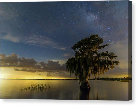 Blue Cypress Lake Nightsky Canvas Print