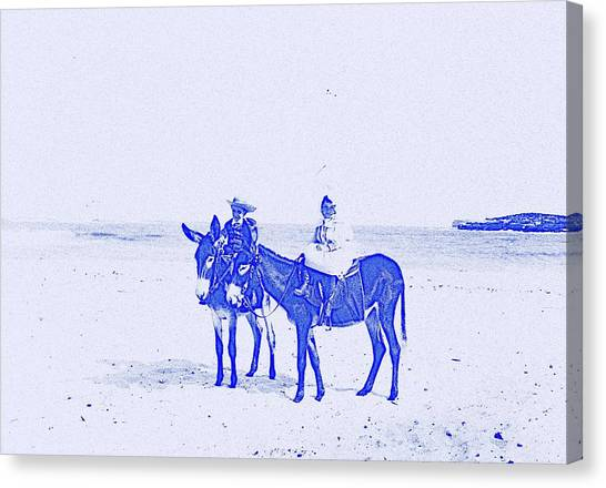 Funny Horses Canvas Print - Blue Donkeys by Adam Asar