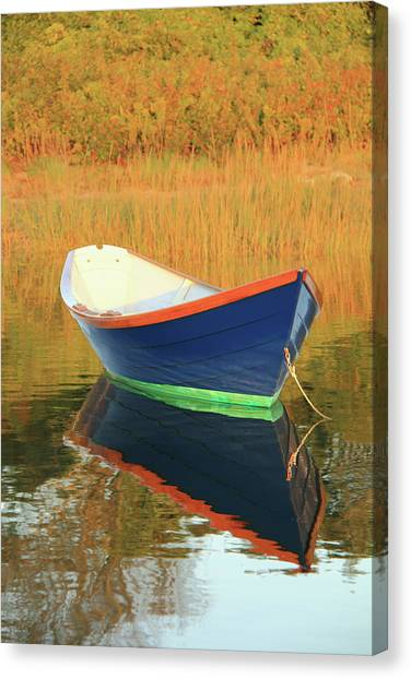 Blue Dory Canvas Print