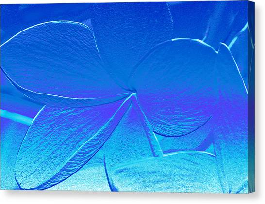 Canvas Print - Blue by Evelyn Patrick