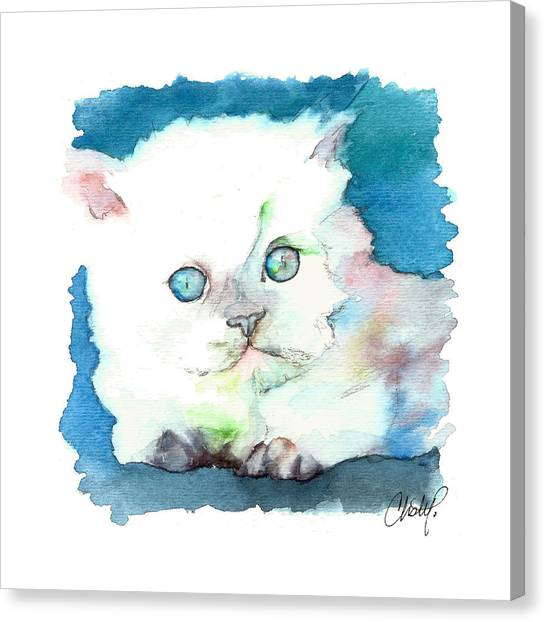 Himalayan Cats Canvas Print - Blue Eyed Kitten by Christy Freeman Stark