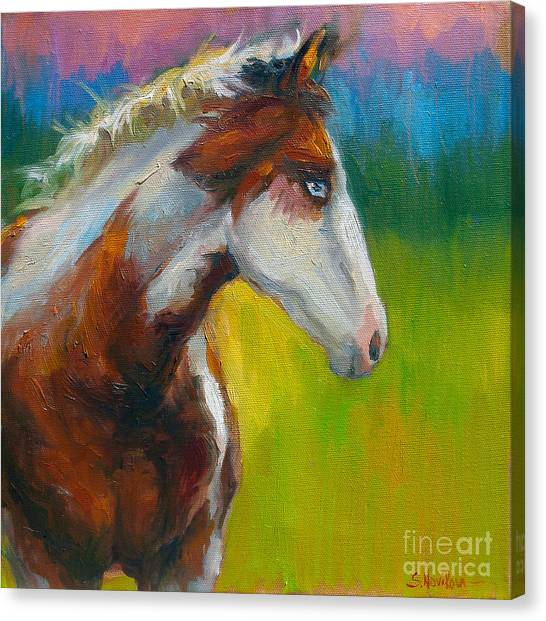 Giclee On Canvas Print - Blue-eyed Paint Horse Oil Painting Print by Svetlana Novikova
