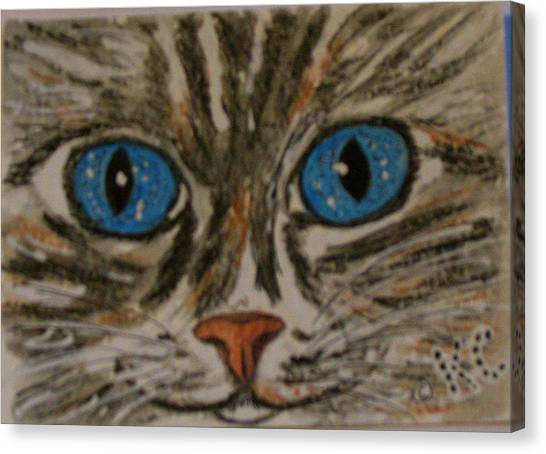 Blue Eyed Tiger Cat Canvas Print
