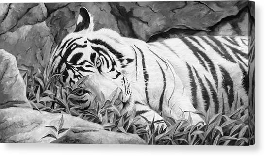 Tiger Canvas Print - Blue Eyes - Black And White by Lucie Bilodeau