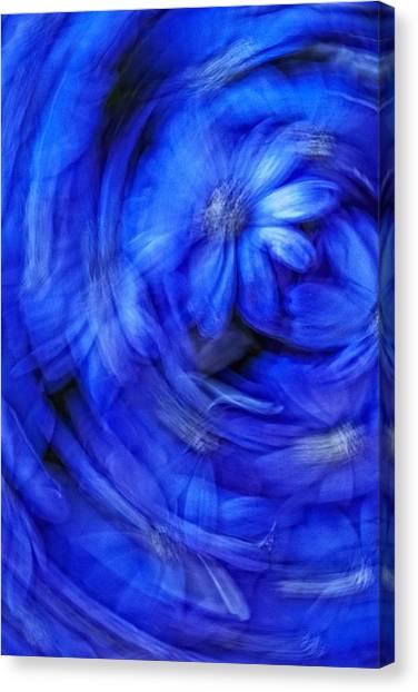 Blue Floral Swirl Canvas Print by Bob Coates