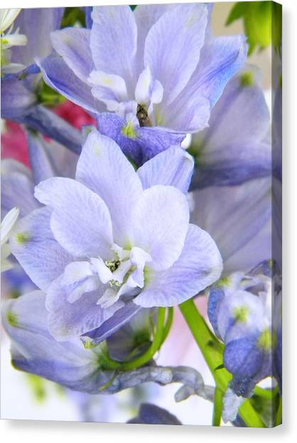 Blue Flowers Canvas Print by Alyona Firth