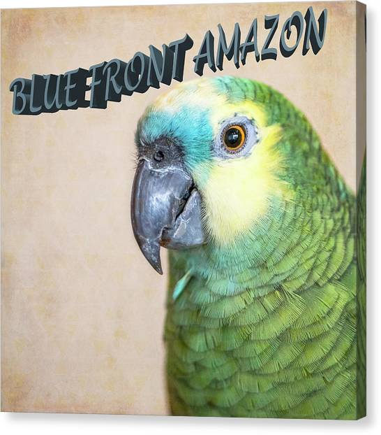 Blue Front Amazon Canvas Print