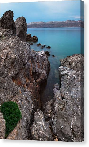 Canvas Print featuring the photograph Blue, Green, Gray by Davor Zerjav