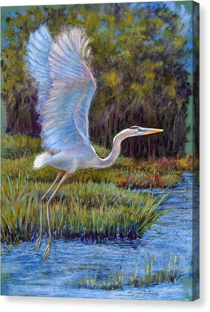 Florida Wildlife Canvas Print - Blue Heron In Flight by Susan Jenkins