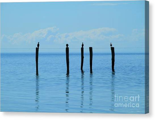Canvas Print featuring the photograph Blue Horizon by Stephen Mitchell