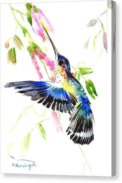 Blue Hummingbird Canvas Print