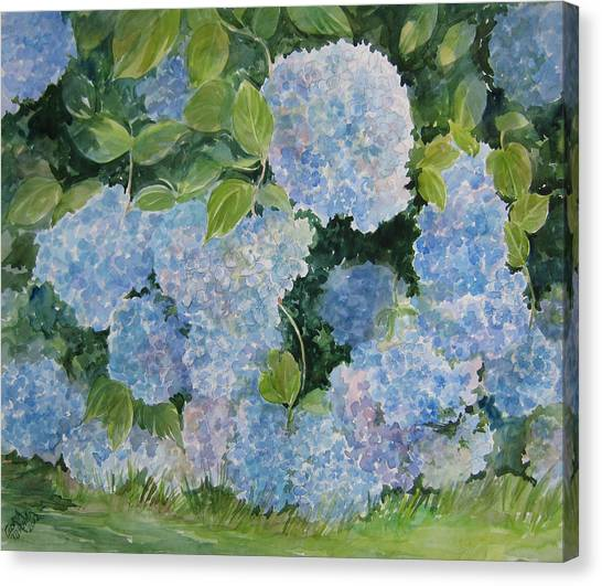 Blue Hydrangea 2 Sold Canvas Print