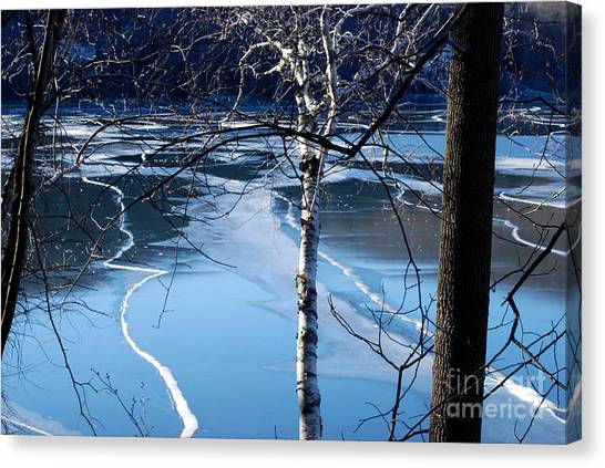 Blue Ice Canvas Print by Andrea Simon