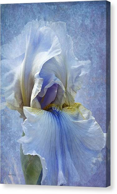 Blue Iris Fog Canvas Print