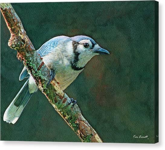 England Artist Canvas Print - Blue Jay by Ken Everett