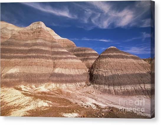 Petrified Forest Canvas Print - Blue Mesa Arizona by Yva Momatiuk and John Eastcott