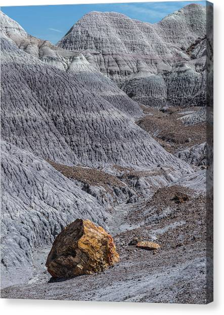 Petrified Forest Canvas Print - Blue Mesa by Joseph Smith
