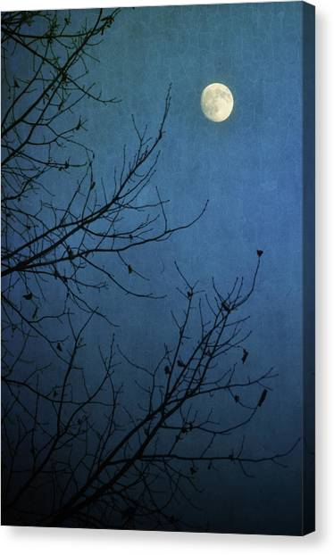 Moonlit Canvas Print - Blue Moon by Susan McDougall Photography