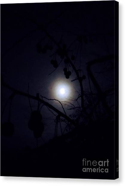 Blue Moons Canvas Print by The Stone Age