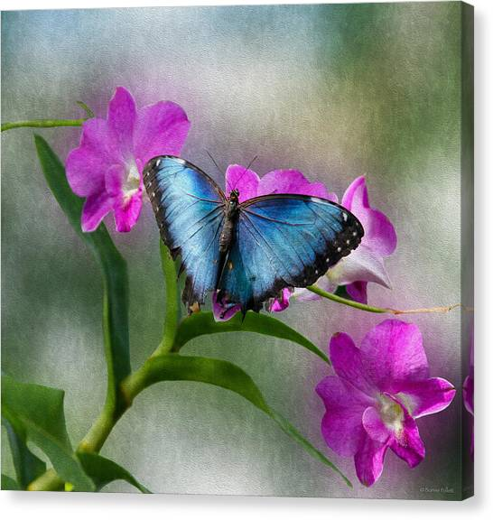 Blue Morpho With Orchids Canvas Print