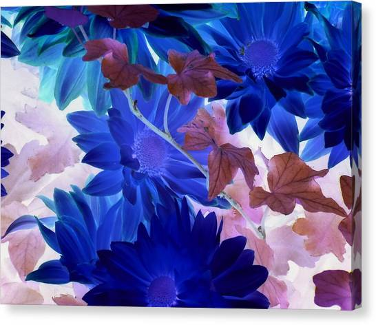 Blue Mums With Purple Ivy Canvas Print
