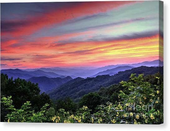 Blue Ridge Parkway Canvas Print - Blue Ridge Mountain Color by Carol Montoya