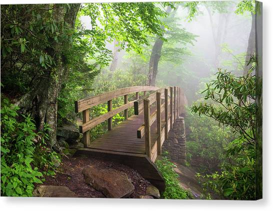 Blue Ridge Parkway Canvas Print - Blue Ridge Parkway Hiking Tanawha Trail Rough Ridge by Dave Allen
