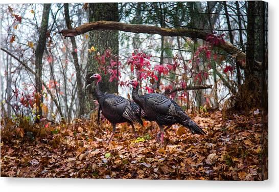 Turkey Dinner Canvas Print - Blue Ridge Turkey Trot by Karen Wiles