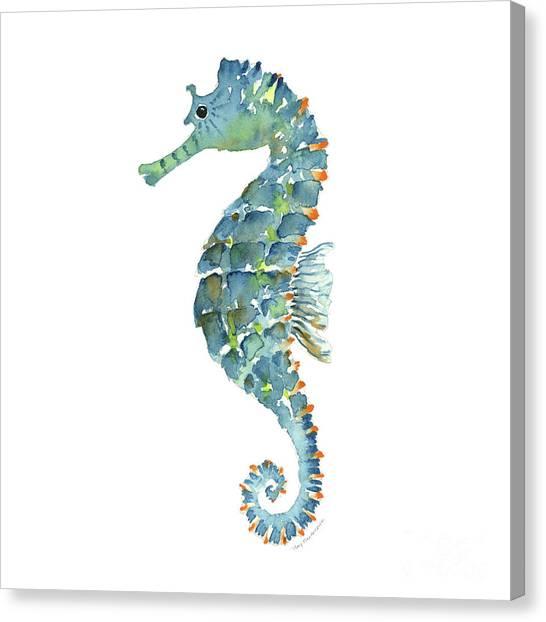 Seahorses Canvas Print - Blue Seahorse by Amy Kirkpatrick