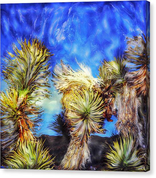 Blue Sky Yucca Canvas Print by Paul Tokarski