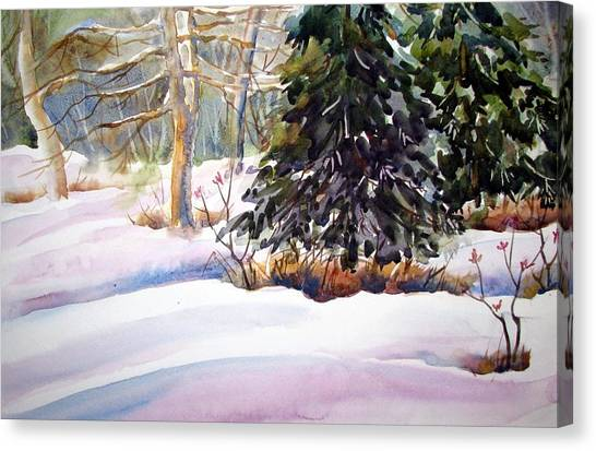 Blue Spruce Canvas Print by Chito Gonzaga