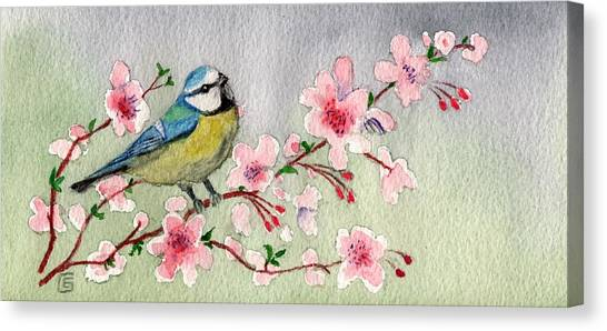 Blue Tit Bird On Cherry Blossom Tree Canvas Print