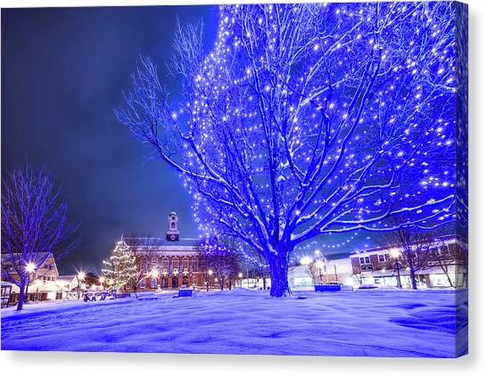Blue Tree - The Final Year Canvas Print