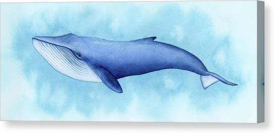 Blue Whales Canvas Print - Blue Whale by Zapista