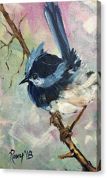 Wrens Canvas Print - Blue Wren by Roxy Rich