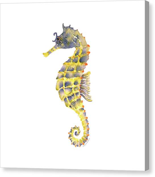 Seahorses Canvas Print - Blue Yellow Seahorse - Square by Amy Kirkpatrick