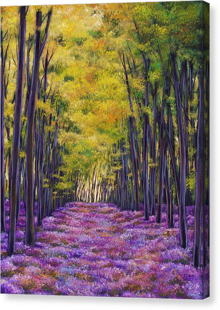 Bonnet Canvas Print - Bluebell Expanse by Johnathan Harris