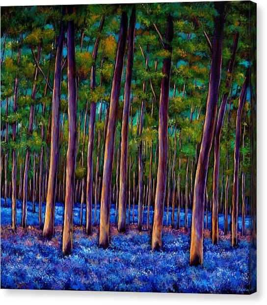 Forest Canvas Print - Bluebell Wood by Johnathan Harris