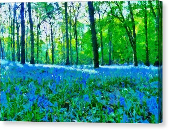 Woodland Canvas Print - Bluebells In Woodland by Scott Carruthers
