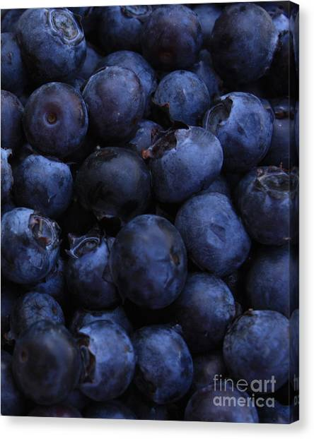 Blueberries Canvas Print - Blueberries Close-up - Vertical by Carol Groenen