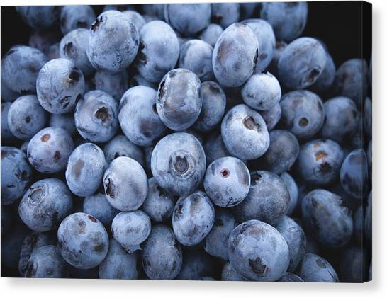 Blueberries Canvas Print - Blueberries by Happy Home Artistry