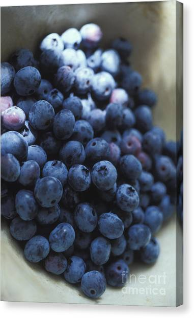 Wild Berries Canvas Print - Blueberries In A Bowl by George Mattei