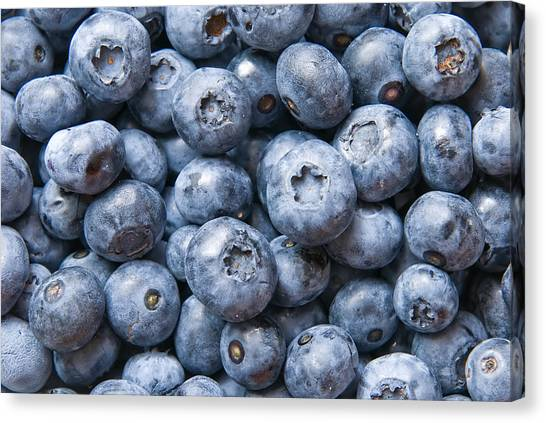 Fruit Canvas Print - Blueberries by Jaroslaw Grudzinski