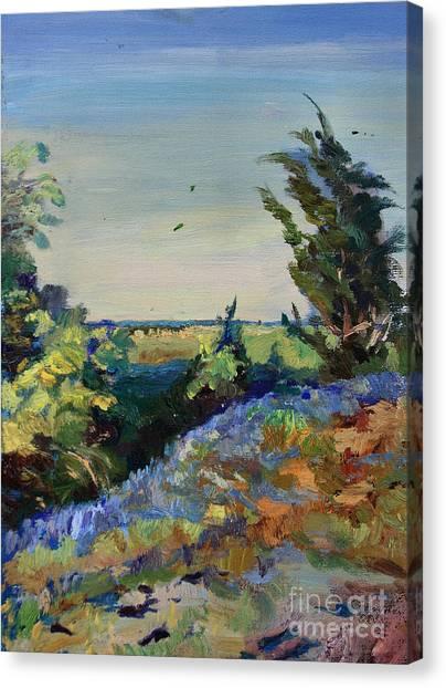 Bluebonnets On A Hill Canvas Print by Maris Salmins