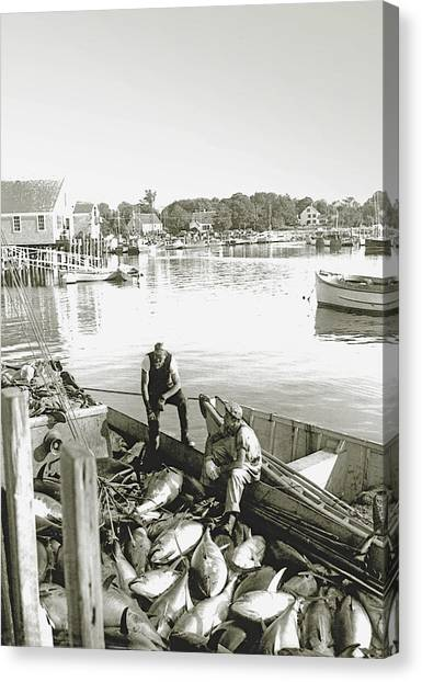 Bluefin Tuna At Barnstable Harbor Canvas Print