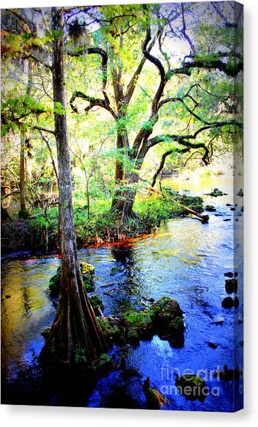 Blues In Florida Swamp Canvas Print