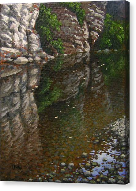 Bluff Reflections Buffalo River Canvas Print by Timothy Jones